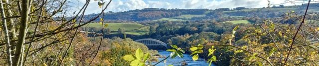 cropped-wylam-bridge-from-above.jpg